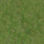 Grass #1 - Seamless - 2K
