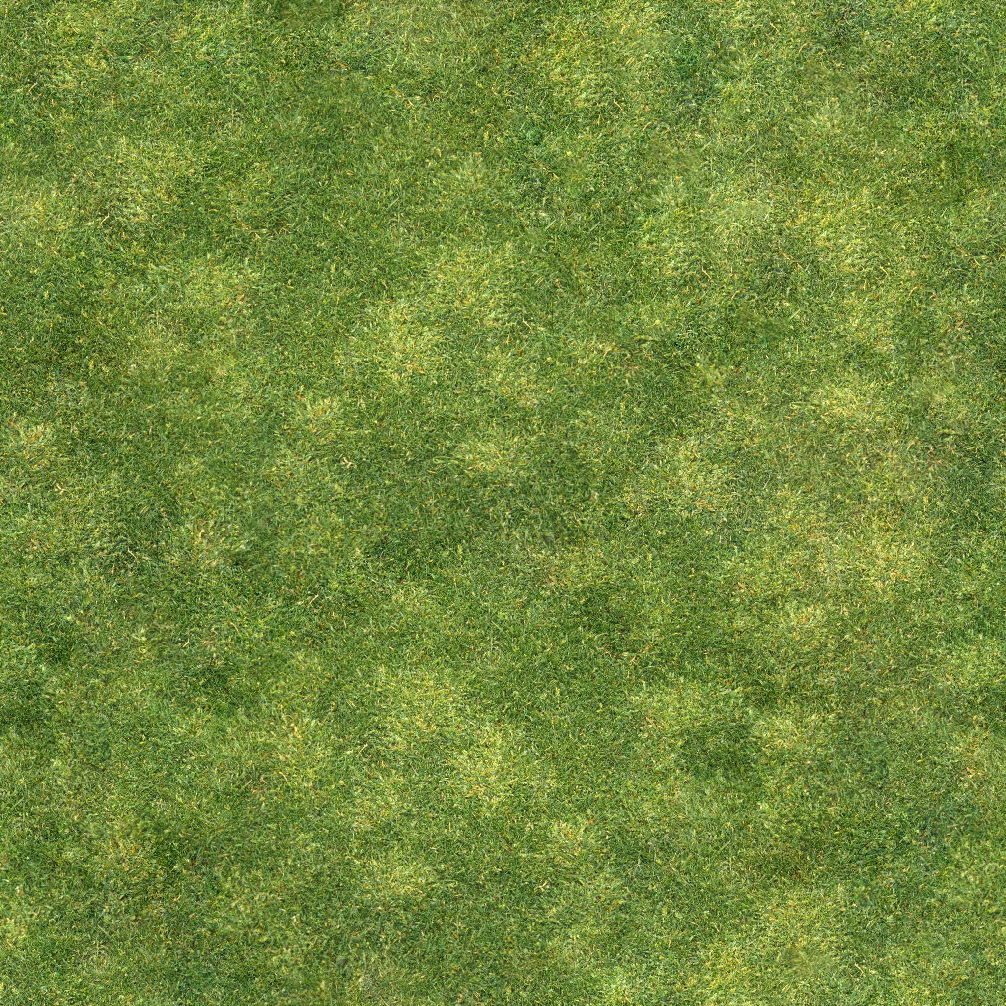 Grass #2 - Seamless - 2K