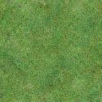 Grass #4 - Seamless - 2K